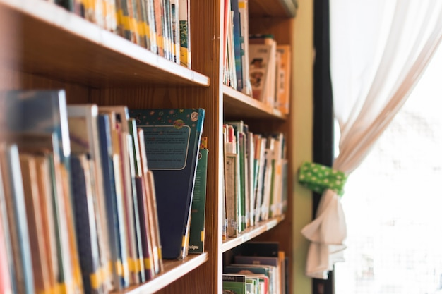 Books on library bookshelf
