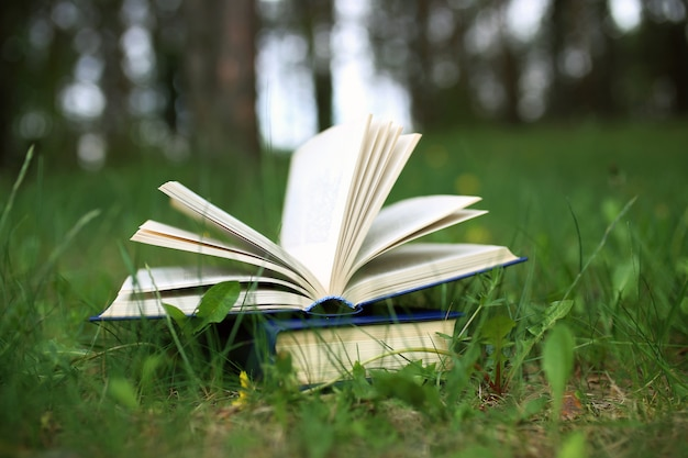 Books outdoor. books in the woods
