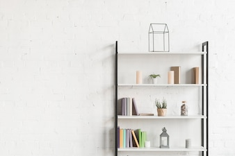 Books, show plant, and candles on shelves in living room