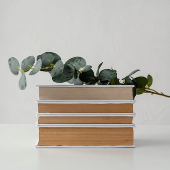 Books stack with plant and white background