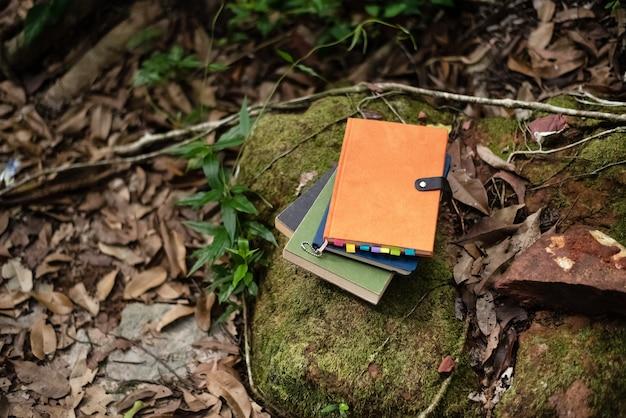 森の中の石の上に積み重なった本、周囲のぼやけた光