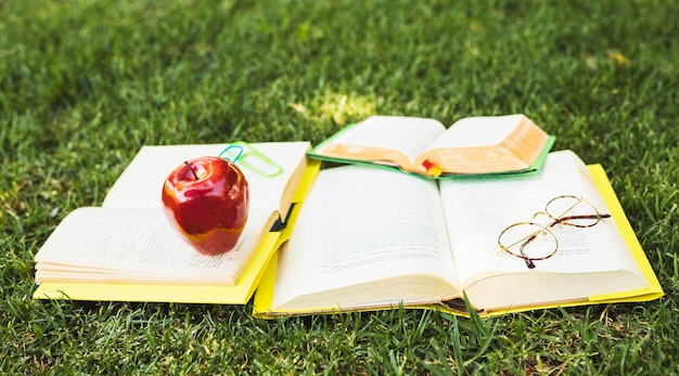 Books with stationery lying on green lawn