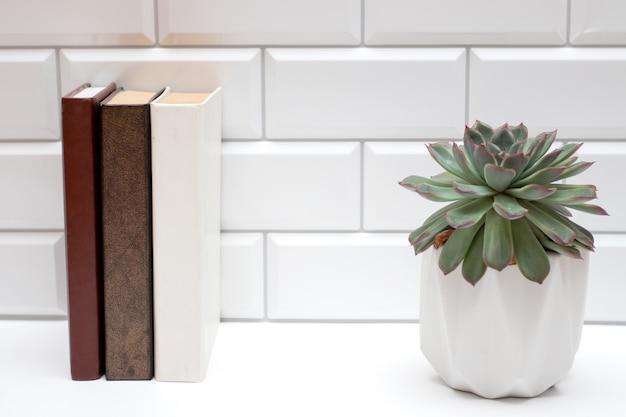 책과 흰색 벽돌 벽에 즙이 많은 책장.
