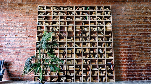 Bookshelves in the library with a wall of red bricks