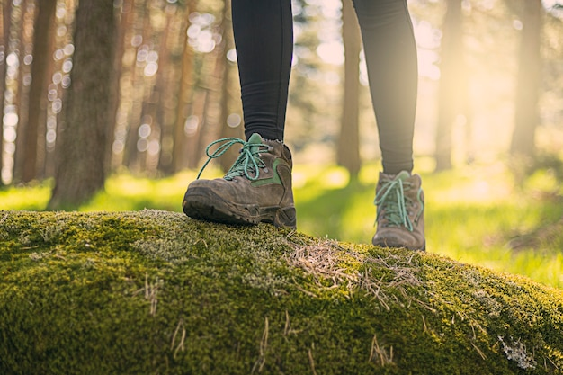 부츠는 자연의 숲을 걷는 것을 닫습니다.