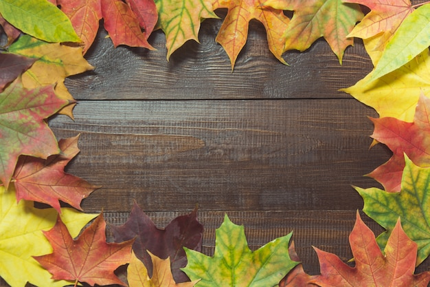 Border of autumn colorful leaves on wooden board. fall concept.