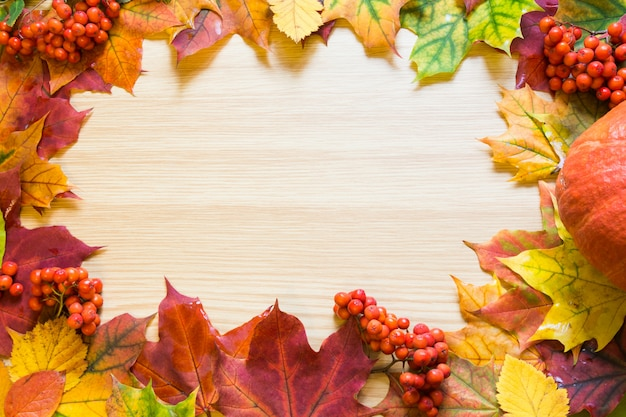 Border of autumn leaves, pumpkin and rowanberry on wooden board. copy space. fall concept.