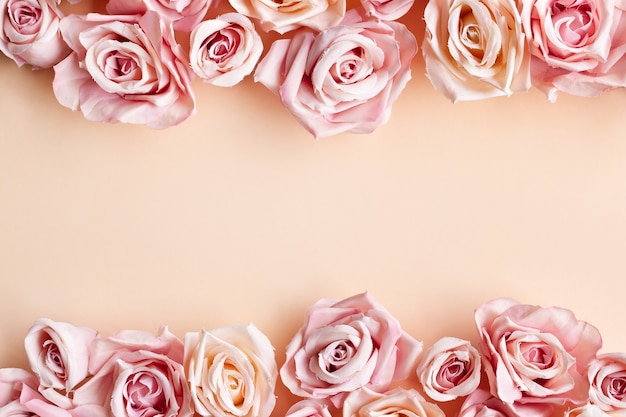 Border of beautiful fresh sweet pink rose isolated on beige background
