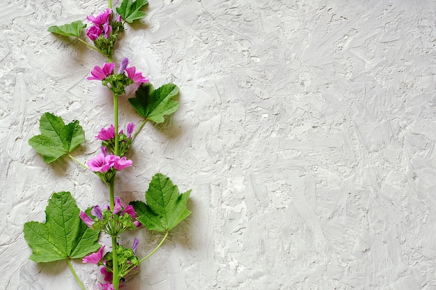 Border of branch with purple flowers and green leaves on gray stone background with copy space for text.