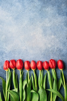 Border of bright red tulips on a blue wall.