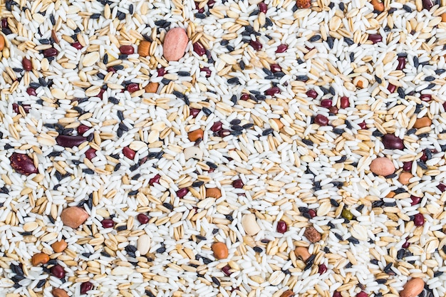 Border frame of corn kernel seed meal and grains in bags isolate