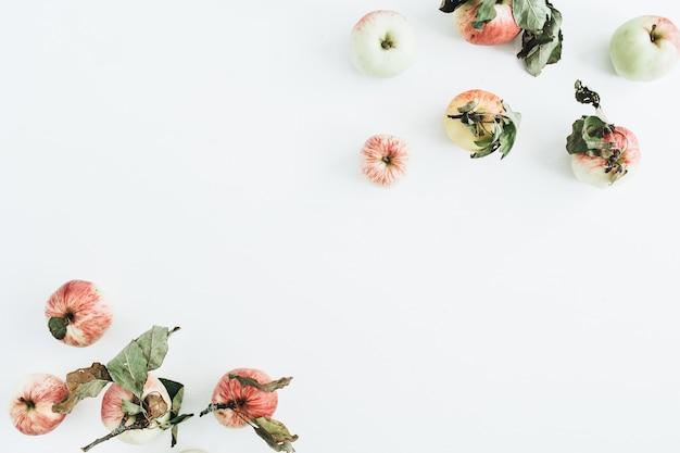 白い表面のリンゴのボーダーフレーム