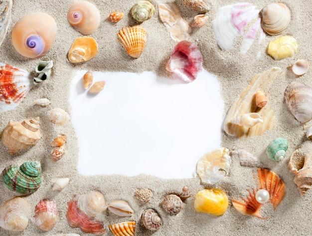 Border frame summer beach shell blank copy space