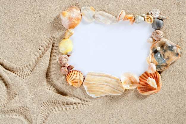 Border frame summer beach shell starfish copy space