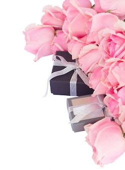 Border  of fresh pink garden roses with gift boxes  isolated on white background