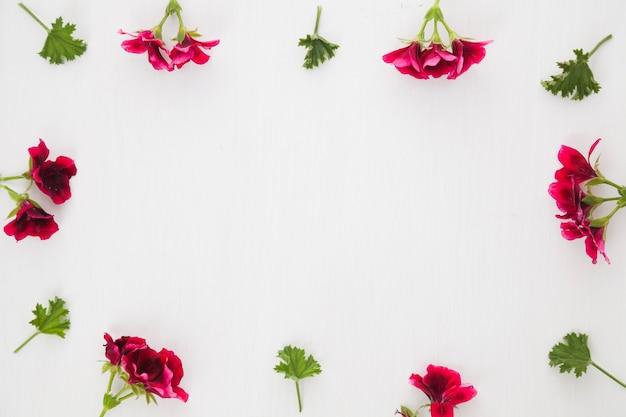 Confine da fiori e foglie Foto Gratuite
