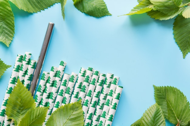 Border of green leaves, paper and metal reusable drinking straw on blue.