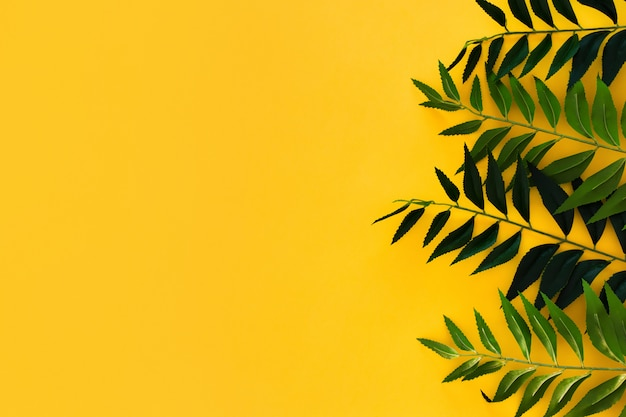 Border green leaves on yellow with copyspace