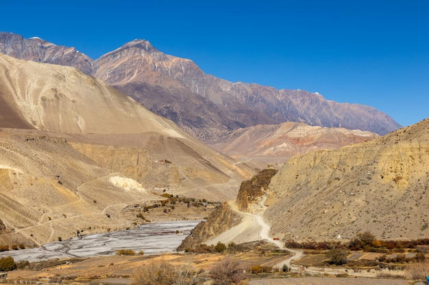 Border between the lower and upper mustang