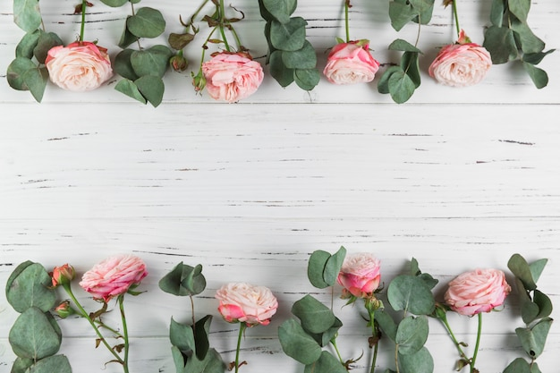Border made with pink roses and leaves on white wooden background