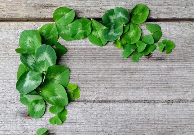 신선한 녹색 토끼풀의 테두리는 오래된 나무 배경에 나뭇잎. 성 패트릭의 날 인사말 카드 또는 포스터 템플릿입니다.