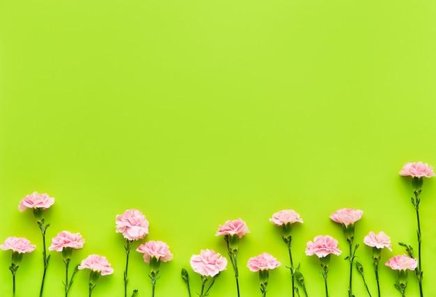 明るい緑の背景にピンクのカーネーションの花の境界線母の日バレンタインデーの誕生日