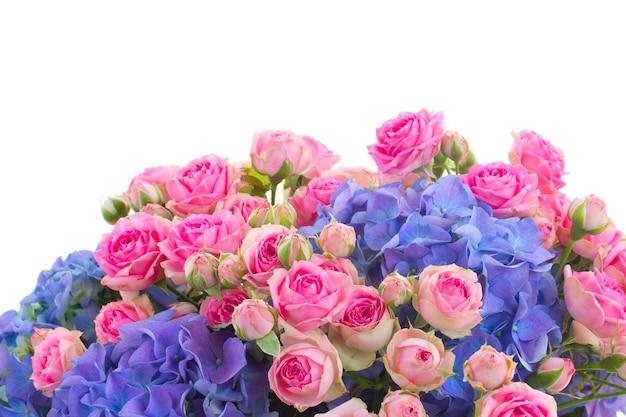 ピンクのバラと青いオルテンジアの花の境界線は、白い背景で隔離のクローズアップ
