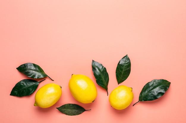 살아있는 산호 배경에 익은 레몬과 잎의 테두리.