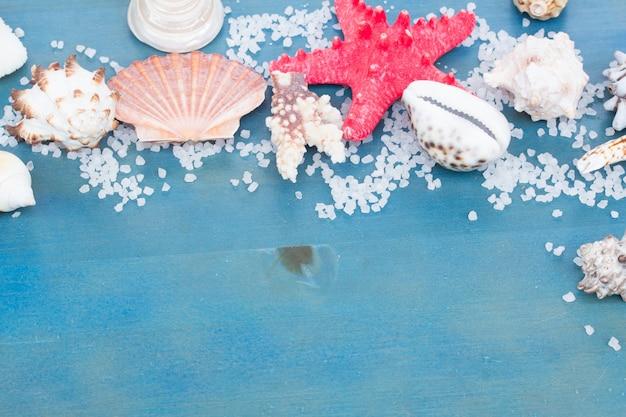 青いテーブルの上の海の星と貝の境界線