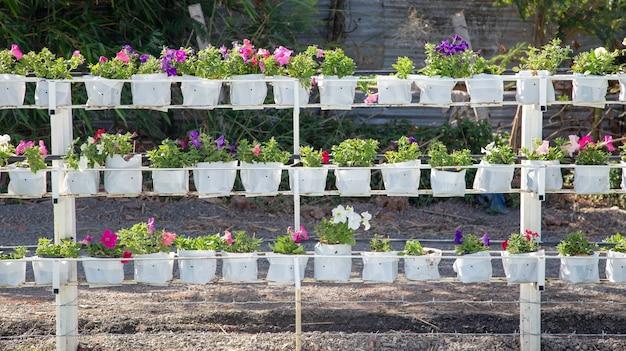Border of property fence with flower port for garden design