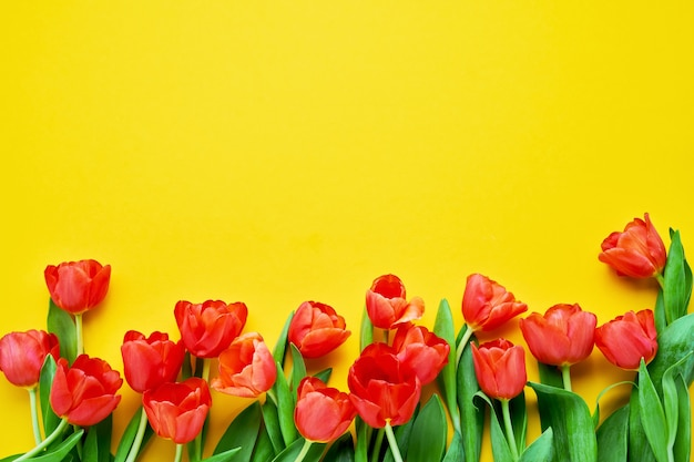 Border of red tulips on a yellow background.