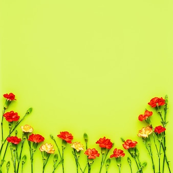 Border of red and yellow carnation flowers on green