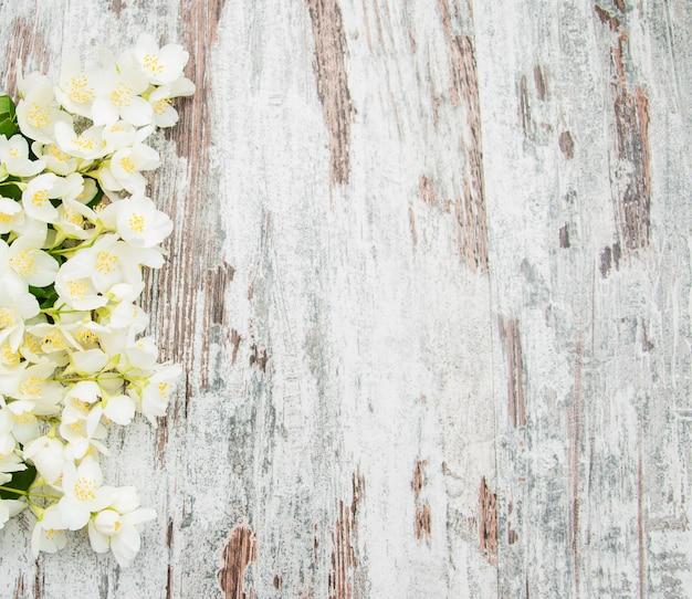 Border with jasmine flowers