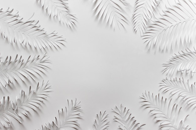 Bored frame made with white paper tropical plant palm feathers