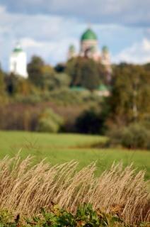 Borodino savior convent, cross