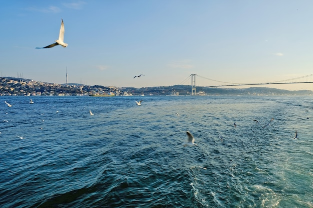 Bosphorus between europe and asia minor. together with the dardanelles connects the black sea with the aegean, which is part of the mediterranean.