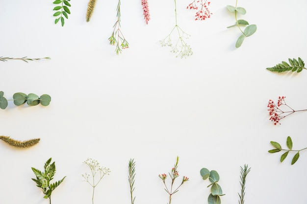 Botanical background with space in middle