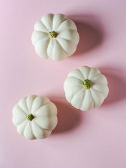 ピンクの背景の秋の装飾的な白いカボチャの植物の花の組成物。コピースペース。上面図。フラットレイ