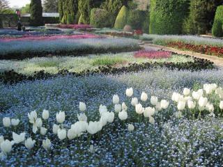 Botanical garden balchik  bulgaria