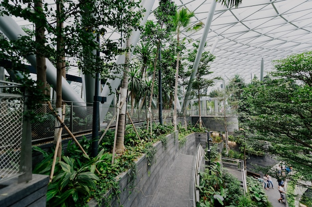 Botanical garden with plants