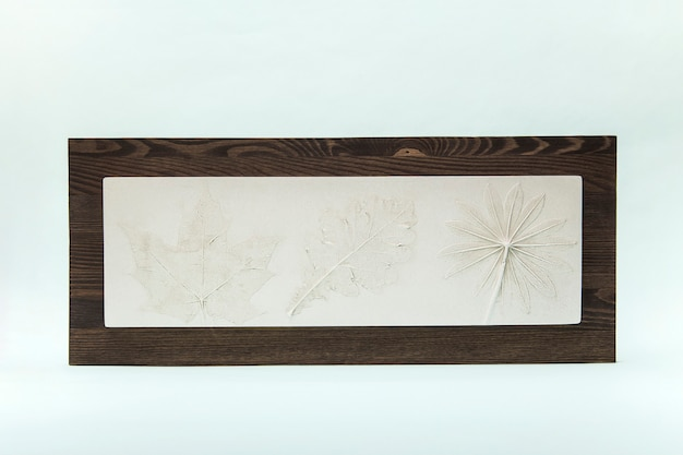 Ботанический гипс клен, люпин, дубовый лист