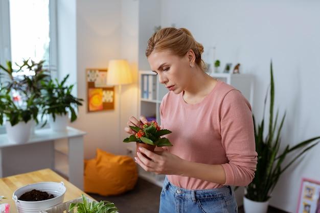 植物学の先生。赤い花と素敵な植物を保持しているピンクのセーターを着ているブロンドの髪の植物学の先生