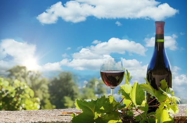 屋外でボトルと赤ワインのグラス