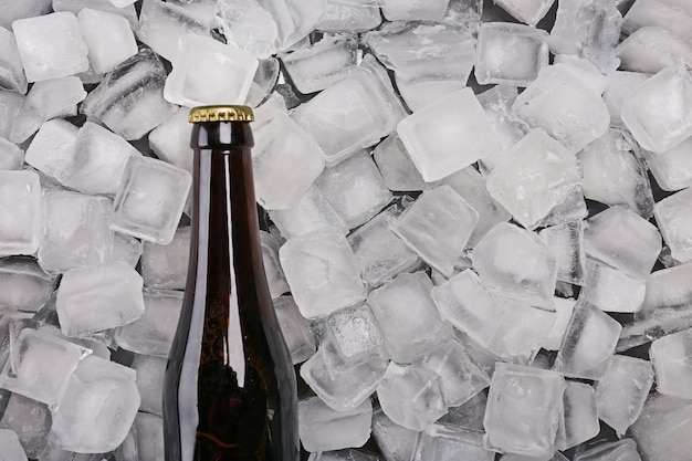 Bottle of beer on ice cubes
