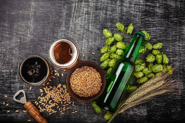 A bottle of beer with green hops, oat, wheat spikelets, opener and glasses with dark and light beer on black scratched chalk board