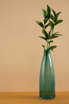 Bottle of blue glass with fresh green domestic plant leaves standing on table on brown wall as part of home interior or studio of design