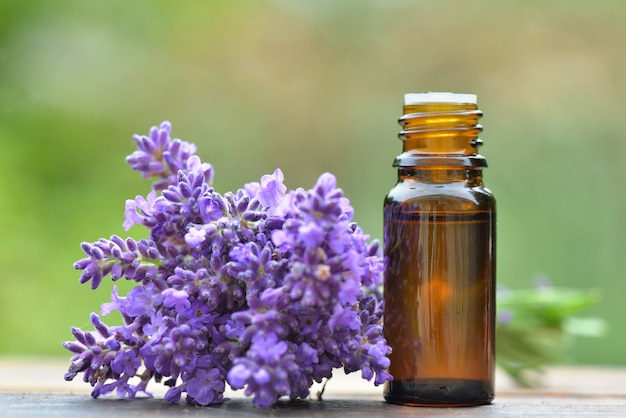 Bottle of essential oil and bouquet of  lavender flower s arranged on a wooden table on green background