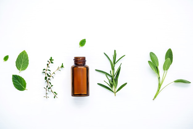 Bottle of essential oil with fresh herbal on white wooden table.