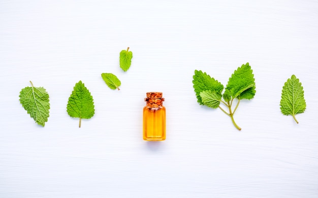 Bottle of essential oil with fresh lemon balm leaves on  wooden table.