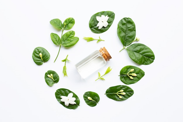 Bottle of essential oil with jasmine flower and leaves on white.